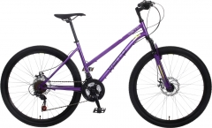 BikeBase British Eagle Varro Double Disc HT low step